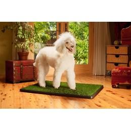 Potty Trainer Medium - Tapete wc para cães